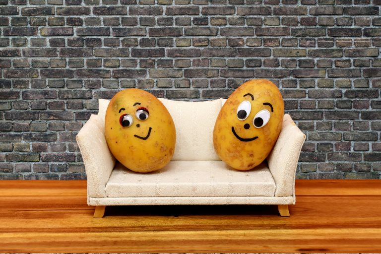 Individuals who lack the motivation to exercise represented by two couch potatoes